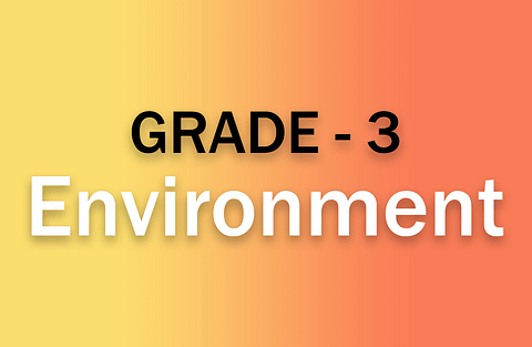 g3_environment