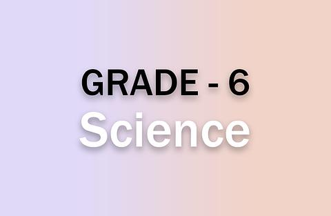 g6_science